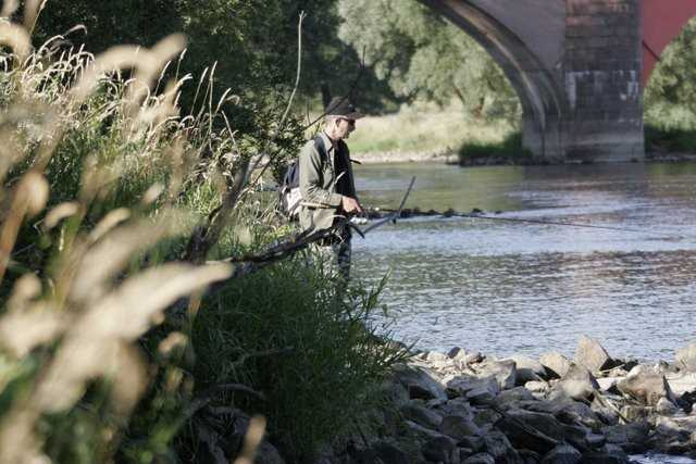 łowienie na napływie