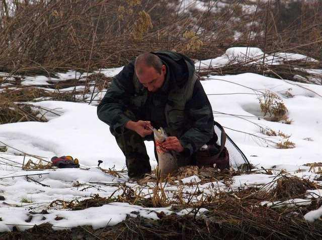 pstrągi w zimę
