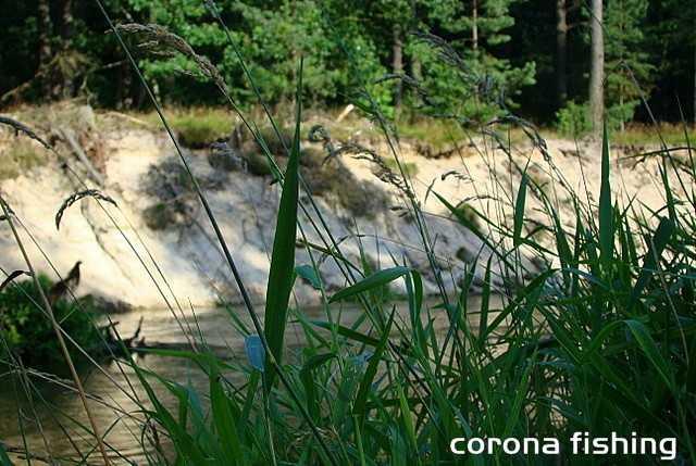 rzeka pstrągowa