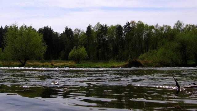 piękna rzeka