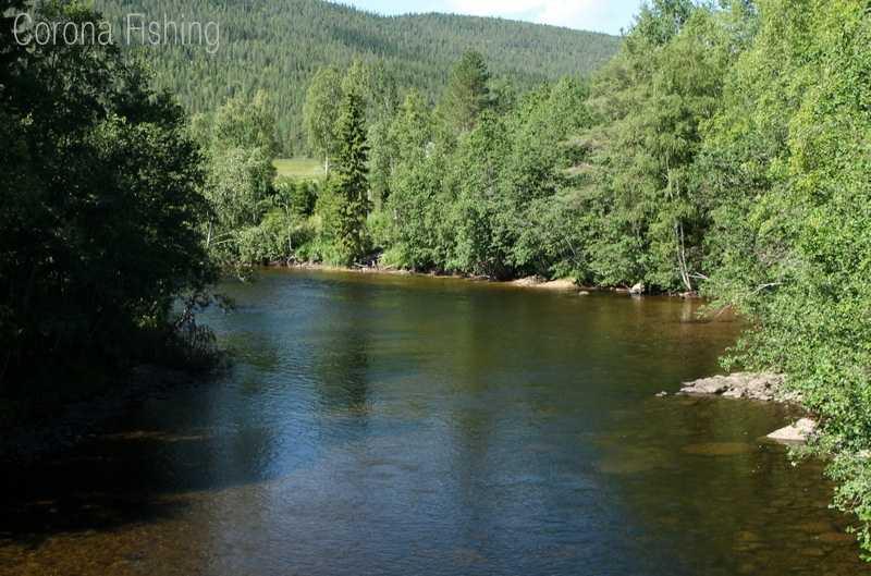 W poszukiwaniu rzeki Samów