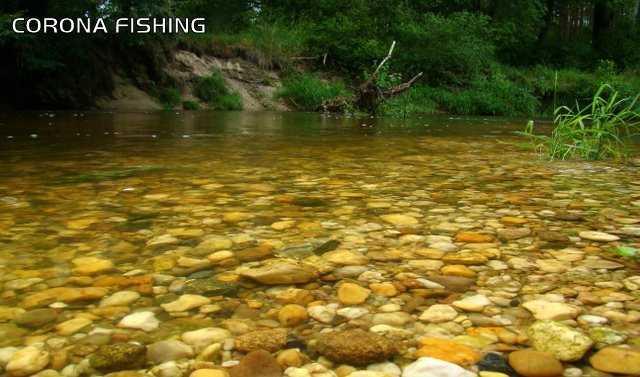 kamienista rzeka