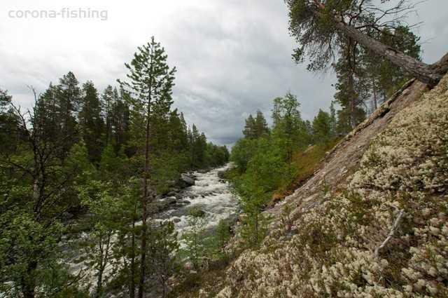 Norwegia rzeka