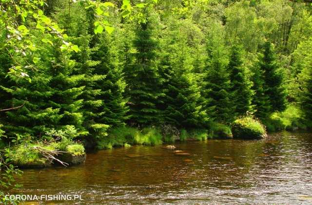 potok w norwegii