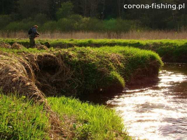 burty na rzece