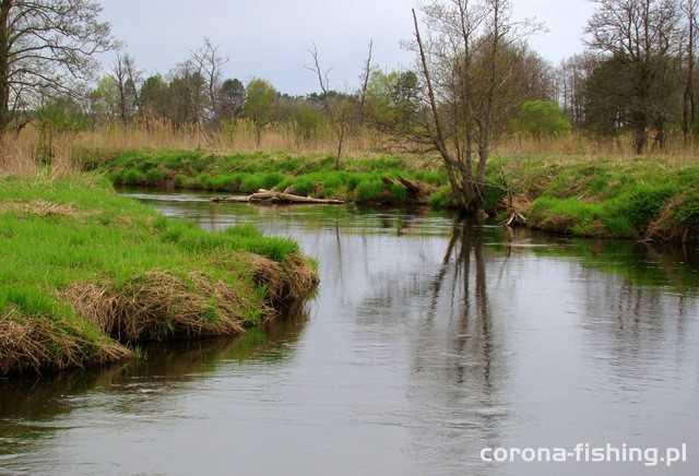rzeka merkys