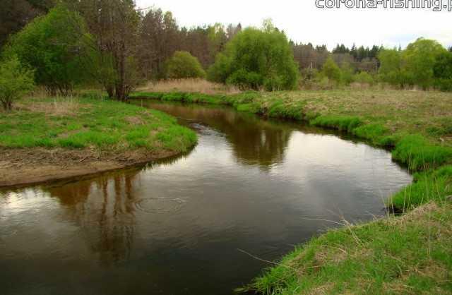 meandry rzeki merkys