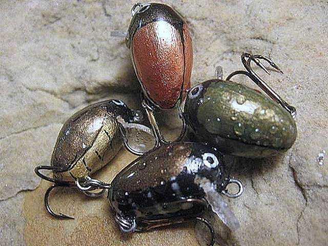 Woblerki owadzie